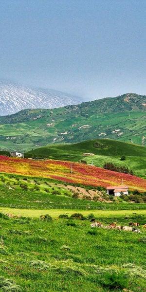 Panorama delle colline di Troina